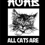 Blackkitchen Katzenprozess: Fällt aus